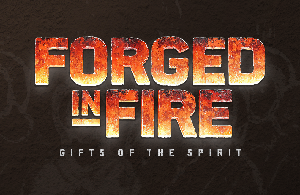 Forged In Fire Teaching Series and Connect Group Experience